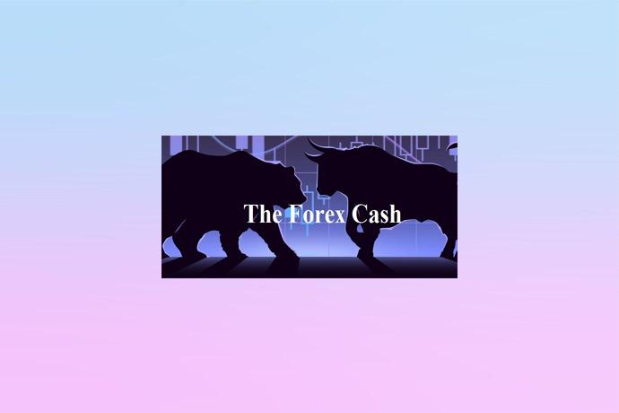 Честный обзор брокера TheForex Сash: отзывы трейдеров