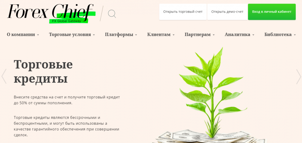 ForexChief – очередной мошенник? Обзор и отзывы реальных клиентов